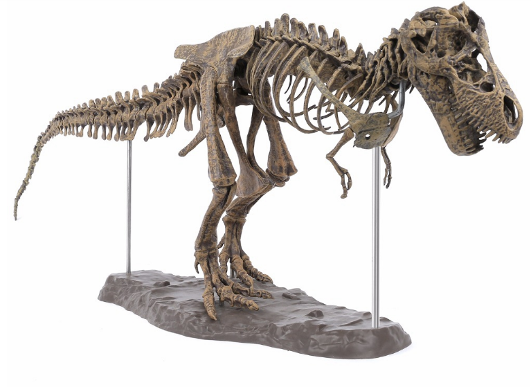 T-REX™ - Tyrannosaurus Model -  Take Your Model Collection To The Next Level