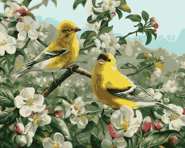 Goldfinch - Painting By Numbers - Jenra Store