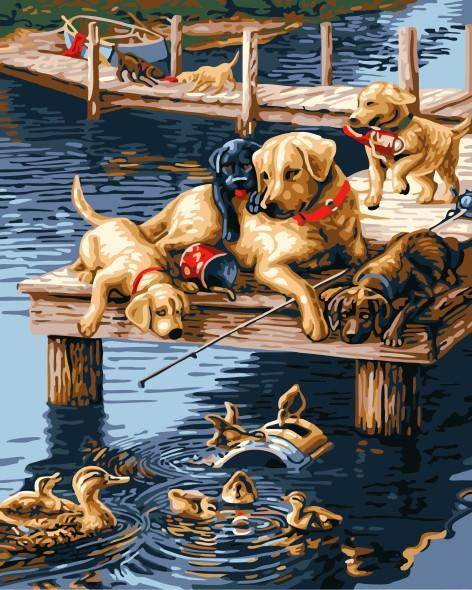 Dog & Duck Friendship - Painting By Numbers - Jenra Store