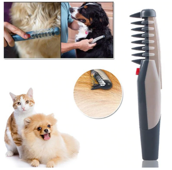 2019  Electric Pet Grooming Comb