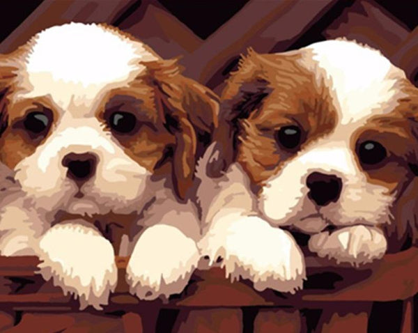 Twin Dogs- Painting By Numbers - Jenra Store