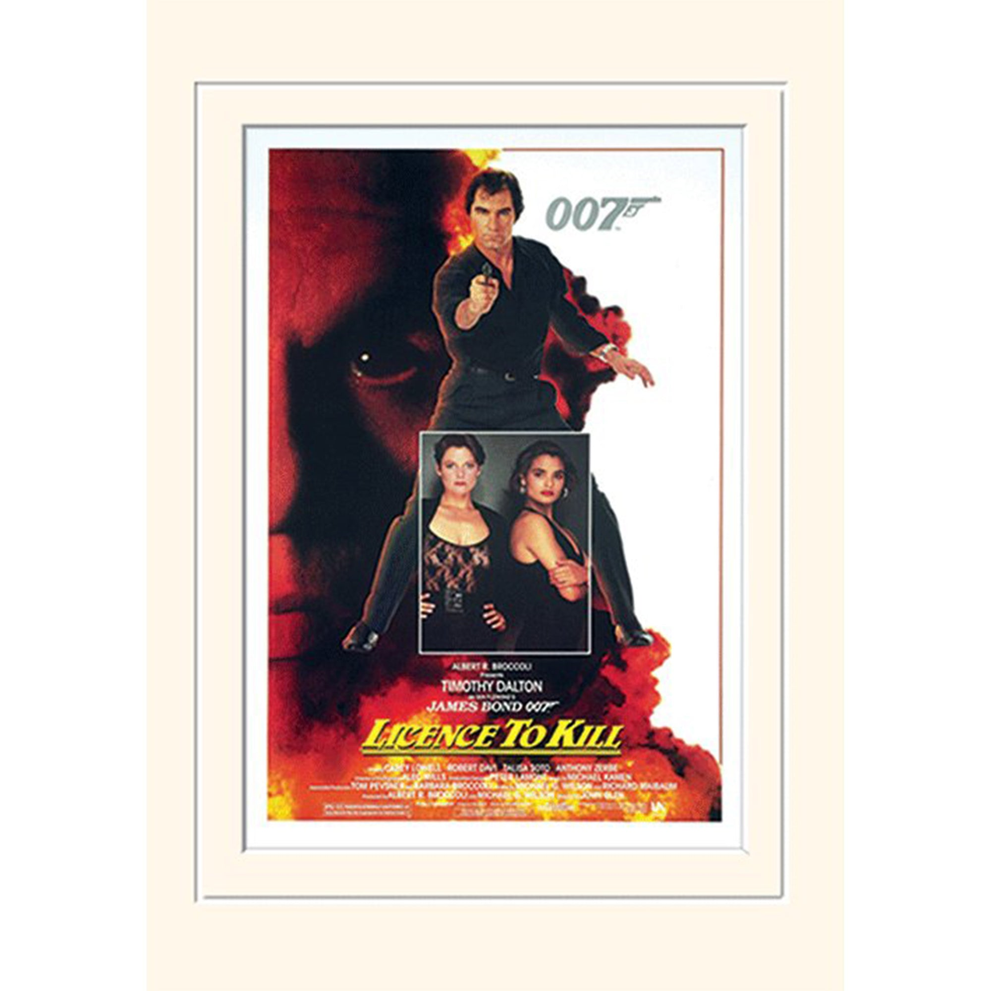LICENCE TO KILL 30 x 40CM MOUNTED PRINT
