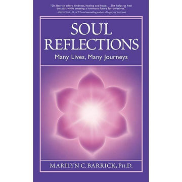 166Soul Reflections, Many Lives, Many Journeys