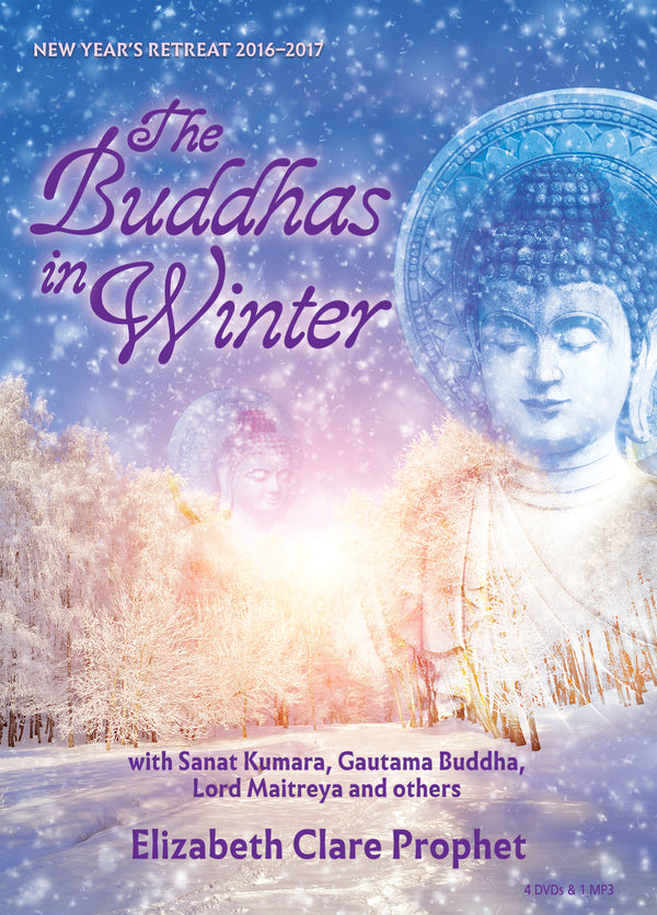 220Buddhas in Winter,The - (DVD - VIDEO)