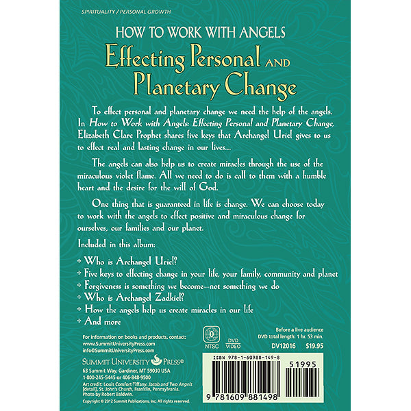 How to Work with Angels Effecting Personal, Planetary Change - (DVD - VIDEO)