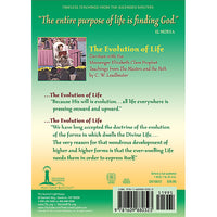 The Evolution of Life, Darshan 3 - (DVD VIDEO)