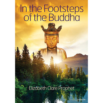 100In the Footsteps of the Buddha - CD