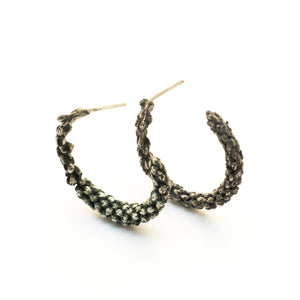 Araucaria Earrings