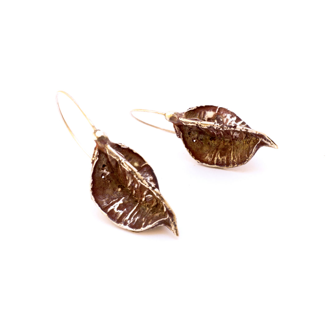 Pittosporum Picolor Earrings