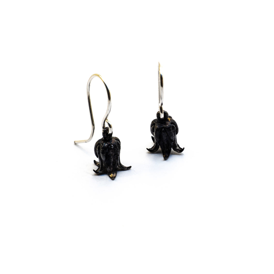 Rosularia Serrata Earrings