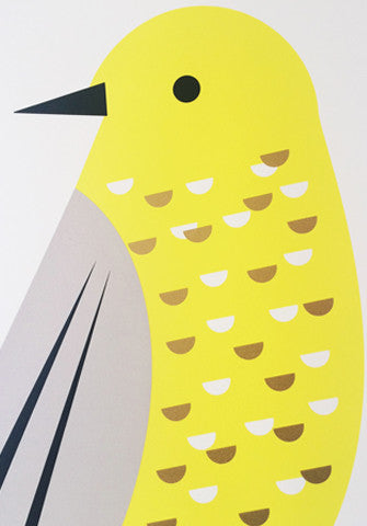 Supersize A1 Songbird Print