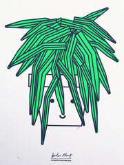 Supersize A2 Spider Plant Print