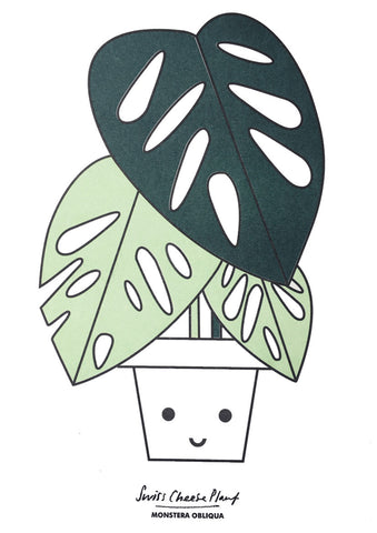 Swiss Cheese Plant A4 Print