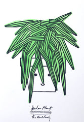 Spider Plant A4 Print