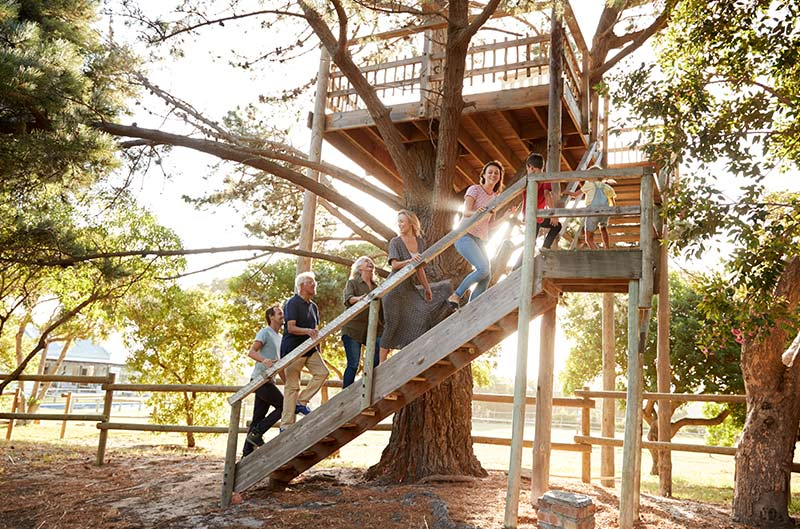 Timeless Tips to Build a Tree House For Your Child