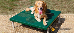 PBARK-420 | Paws Table/Grooming Table