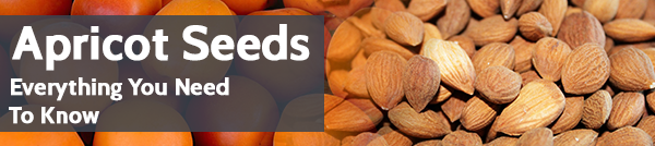 Apricot Seeds: Everything You Need To Know