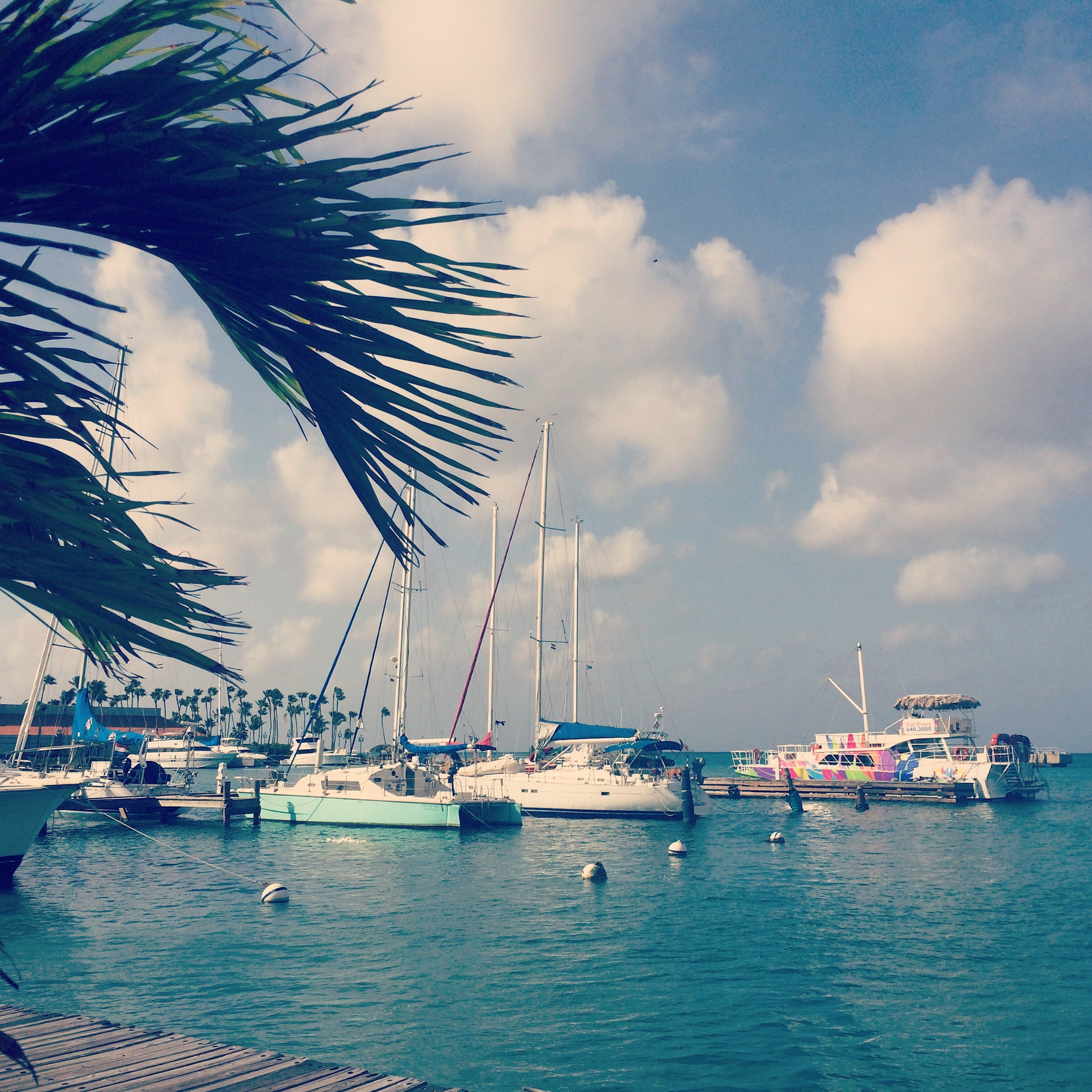 Boat Dock Aruba by KARMA for a cure