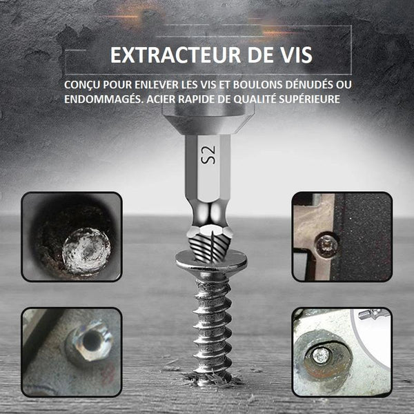 Extracteur de Vis (4 Pcs/5pcs/6pcs) Flash Ventes Argenté ( 4pcs )