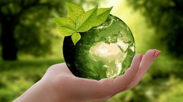 TIPS ON DEVELOPING AN ECO-FRIENDLY LIFESTYLE