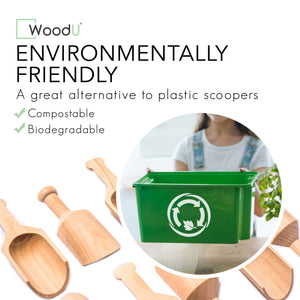 "Eco Friendly Mini Wooden Scoop 4"" 1/4 10PC"