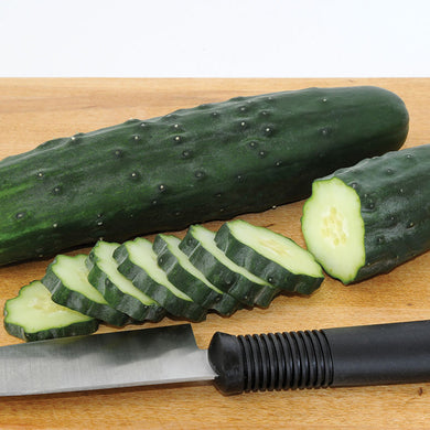Slicing Cucumber Plant - Organic