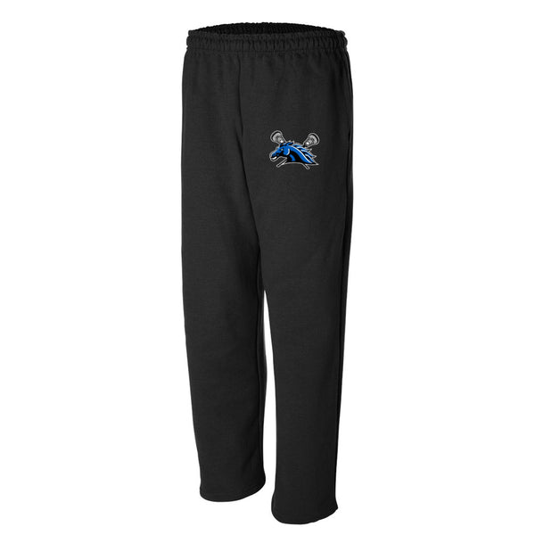 Anderson County Mustangs 50/50 Blend Sweats