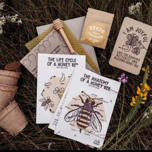 Contents of Seeds for Bees Kit open on the grass outside.