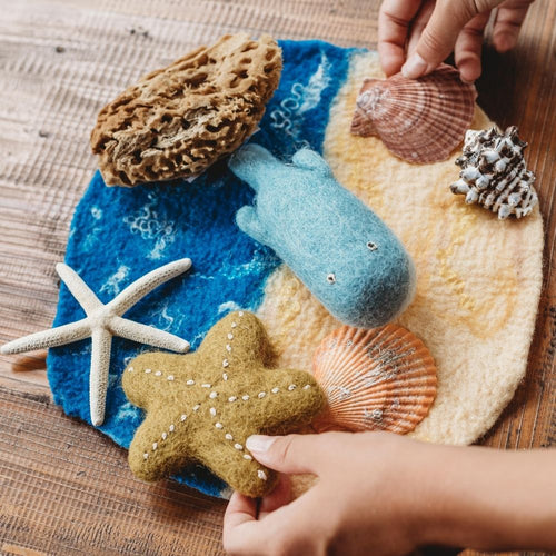 Sandy Seascape Playscape