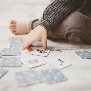 ocean-creatures-cards-on-ground-with-boy-about-to-pick-one-up