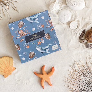 ocean-memory-cards-gift-box-in-a-beach-scene-with-sand-shells-and-a-turtle-figure
