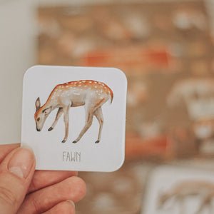 fawn-card-held-up-by-adult