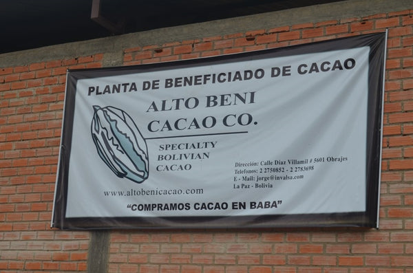 Bolivia Organic Heirloom (Beniano) Unroasted Cacao Beans.