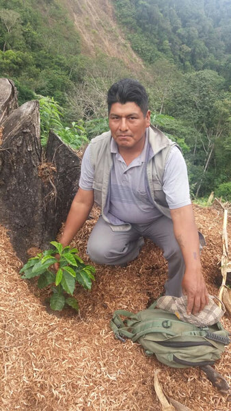 Bolivia Microlot: Rene Millares (Flor de Naranja -Taipiplaya). Past Crop. NEW LOWER PRICE!