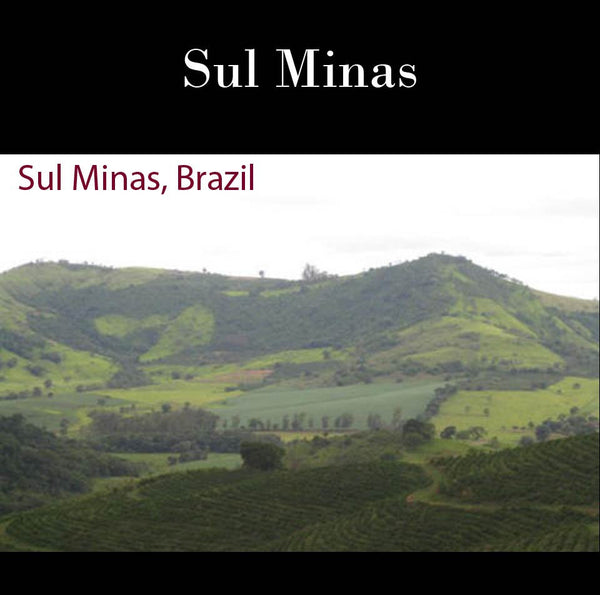 Brazil Sul Minas Natural-Process AAA. JUST ARRIVED!