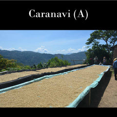 Bolivia FTO A (Caranavi) New Arrival! Also available at the ANNEX in CA