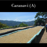 Bolivia FTO A (Caranavi). Past Crop. Available only in Salisbury, MA. NEW LOWER PRICE