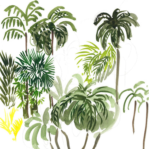Palms by Virginia Johnson