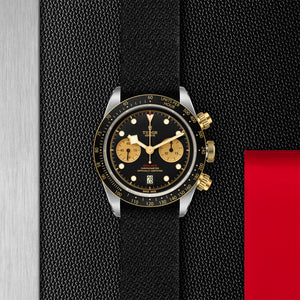 TUDOR Black Bay Heritage Chrono S&G