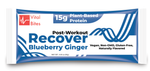 Blueberry Ginger Recover Vegan Protein Bar (Box of 12)