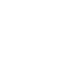 Skallywag Tactical