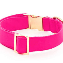 Load image into Gallery viewer, Hot Pink Gold Clasp Collar