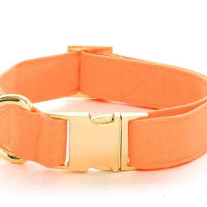 Peach Collar with Gold Clasp