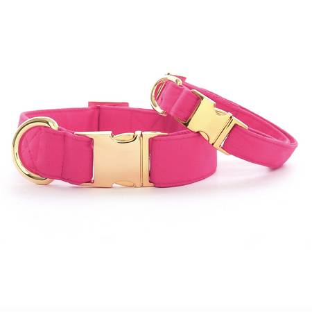 Hot Pink Gold Clasp Collar