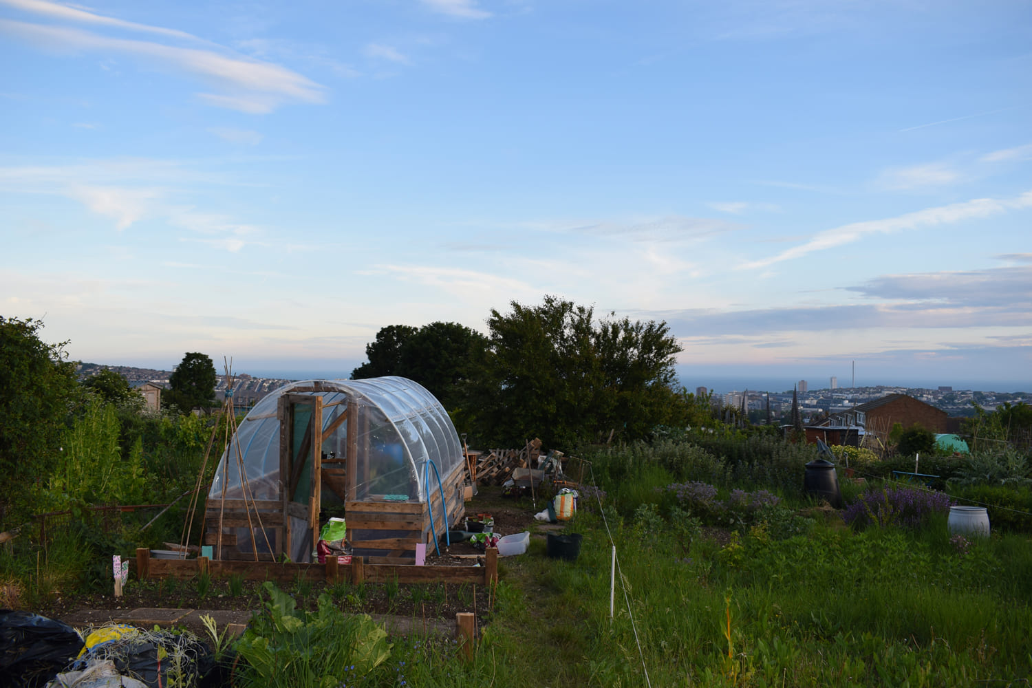 Proper Copper Design - Allotment - Sustainable Living - Grow Your Own Veg