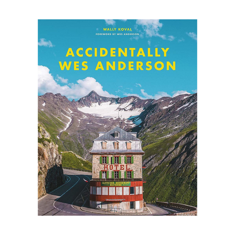 book cover of Accidentally Wes Anderson written by Wally Koval
