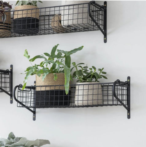 black wire basket shelf attached to the wall with two pot plants inside