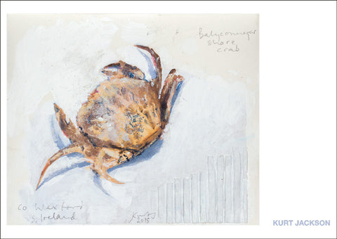 Balyconnegar shore crab, Ireland. 2015. Postcard. Pack of 10.
