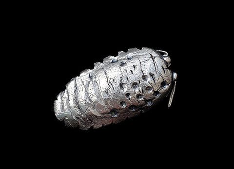Woodlouse/Sea slater brooch. 2015.