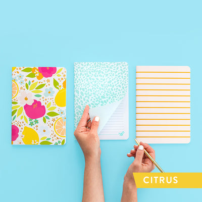 Everyday Lined Notebook Set
